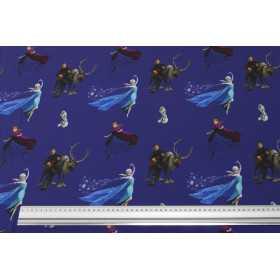 Jersey Stoff mit Disney Motiven - Elsa die Eiskönigin