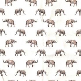 Jersey Elefanten